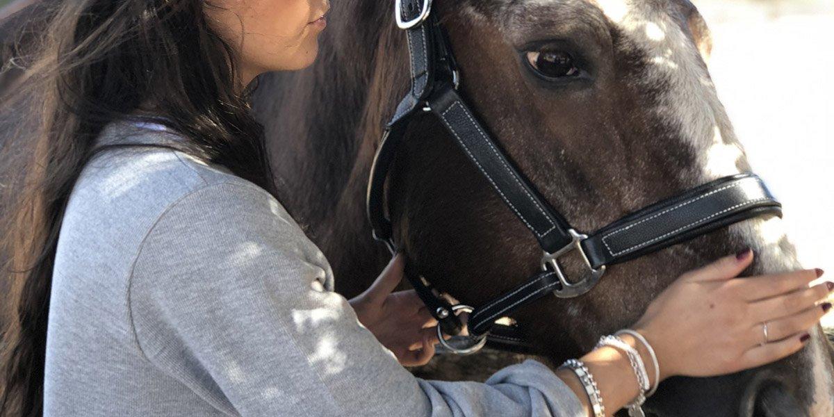 terapias y formaciones mamen coaching con caballos 2